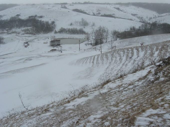 winterback01
